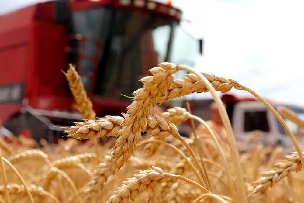 Что дает использование курсоуказателя сельхозпредприятиям.